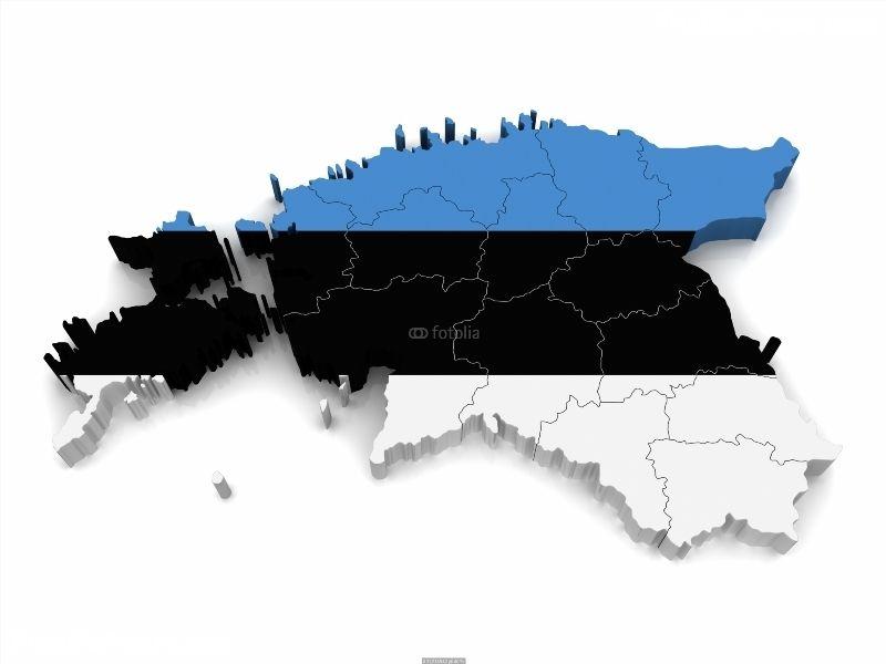 3D Map of Estonia Poster IDF32216942 3D