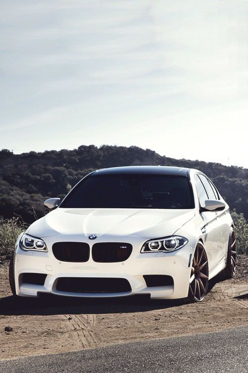 bmw m5 f10 v8 cars wallpaper for phone pinterest bmw bmw m5 rh pinterest com
