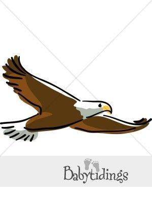 14++ Eagle clipart images free information