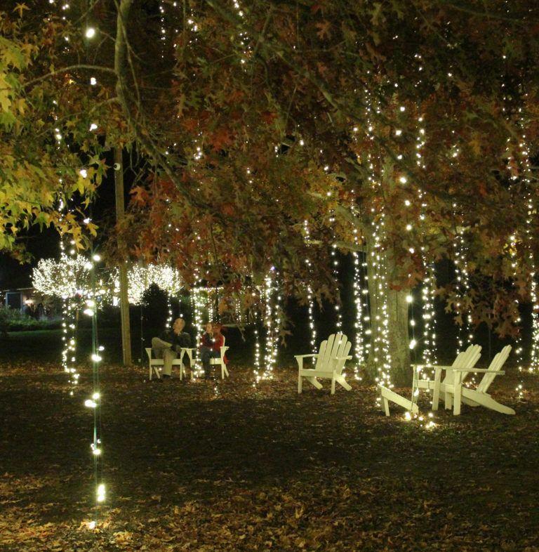 a visit to biltmore estate at christmas local fun biltmore rh pinterest com