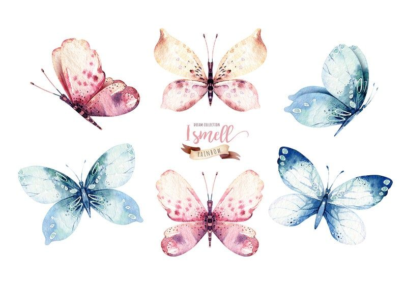 Watercolor Butterfly Clipart Watercolor Butterfly Individual Png Files Hand Painted Vibrant Bohemian Clipart Butterfly Watercolor Butterfly Clip Art Butterfly Illustration