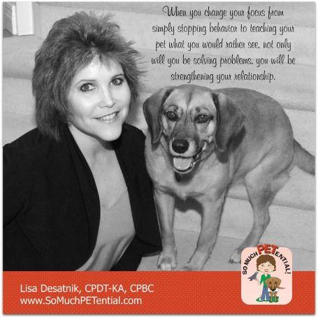 Tips For Solving A Dog Behavior Problem From Cincinnati Certified