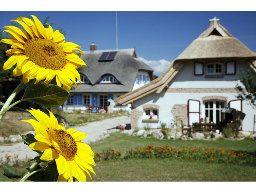 Familienfreundliches 4-Sterne Reetdachhaus mit Kaminofen und Sauna für 5 Personen (85 m²) in Sellin (Ostseebad)