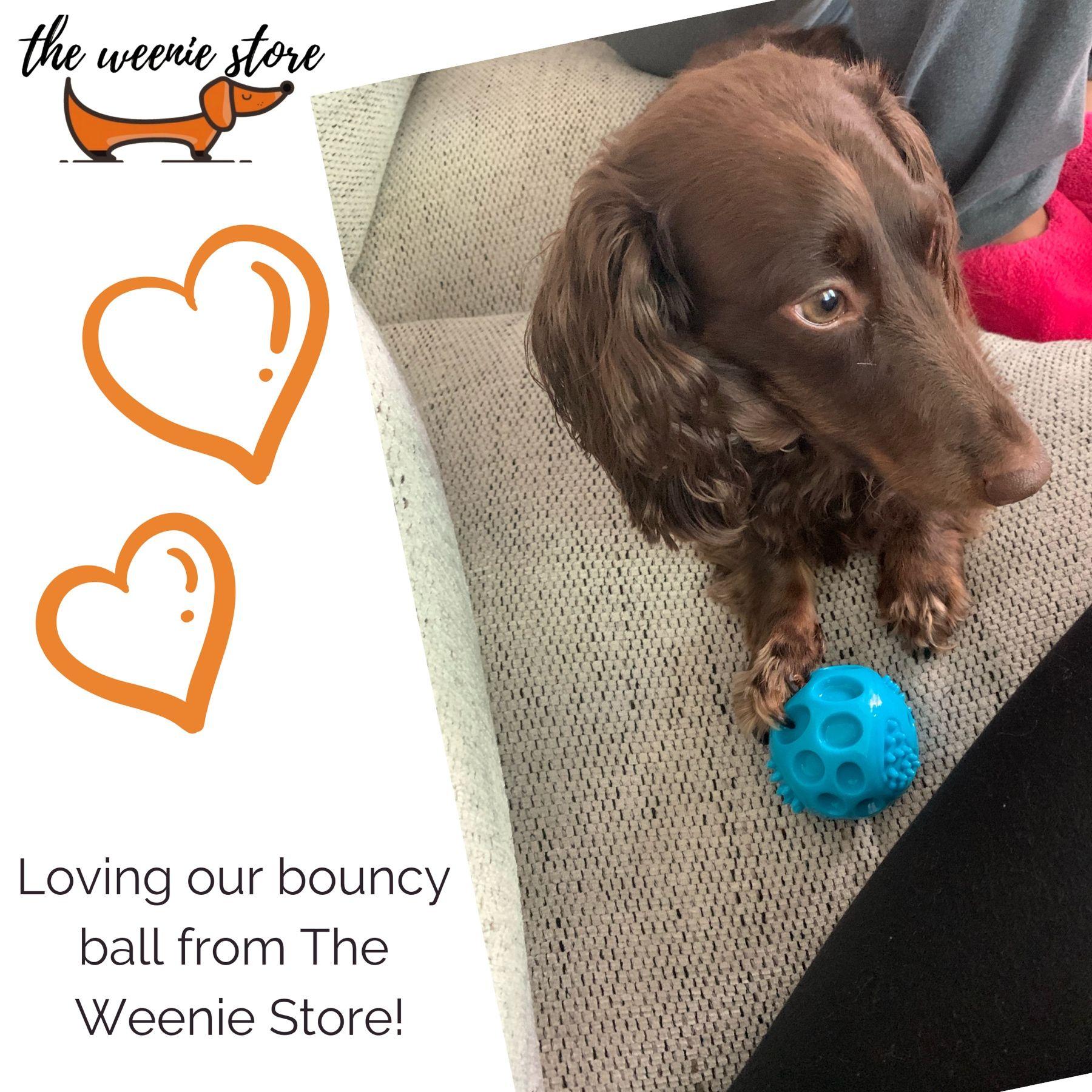 Xoxo The Weenie Store