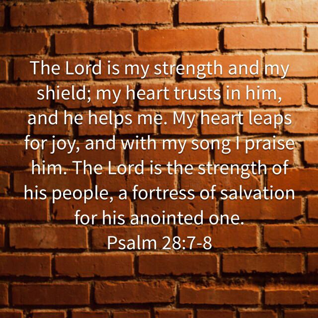 Psalm 28 7 8 New International Version Niv Bible Apps Fear Of The Lord Psalms