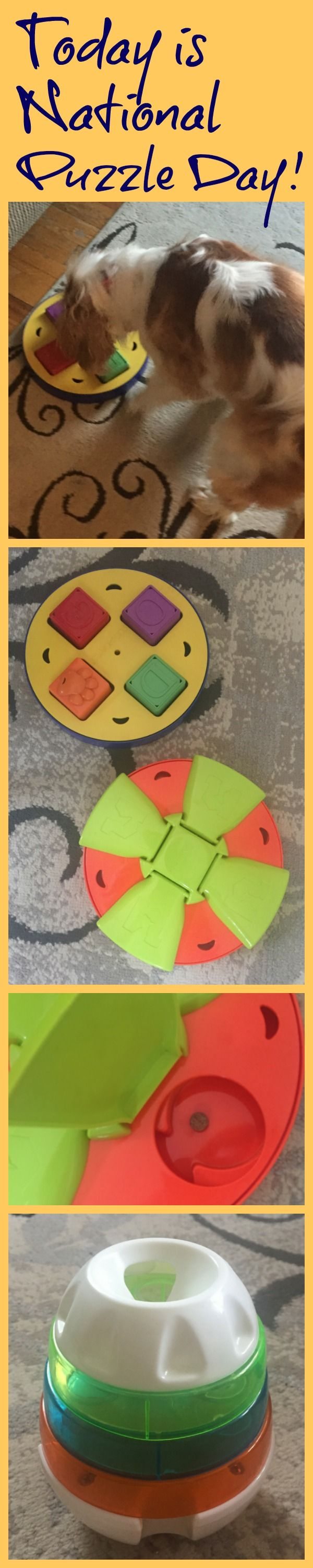 Today is National Puzzle Day, Dog Puzzle toys, Providing ...