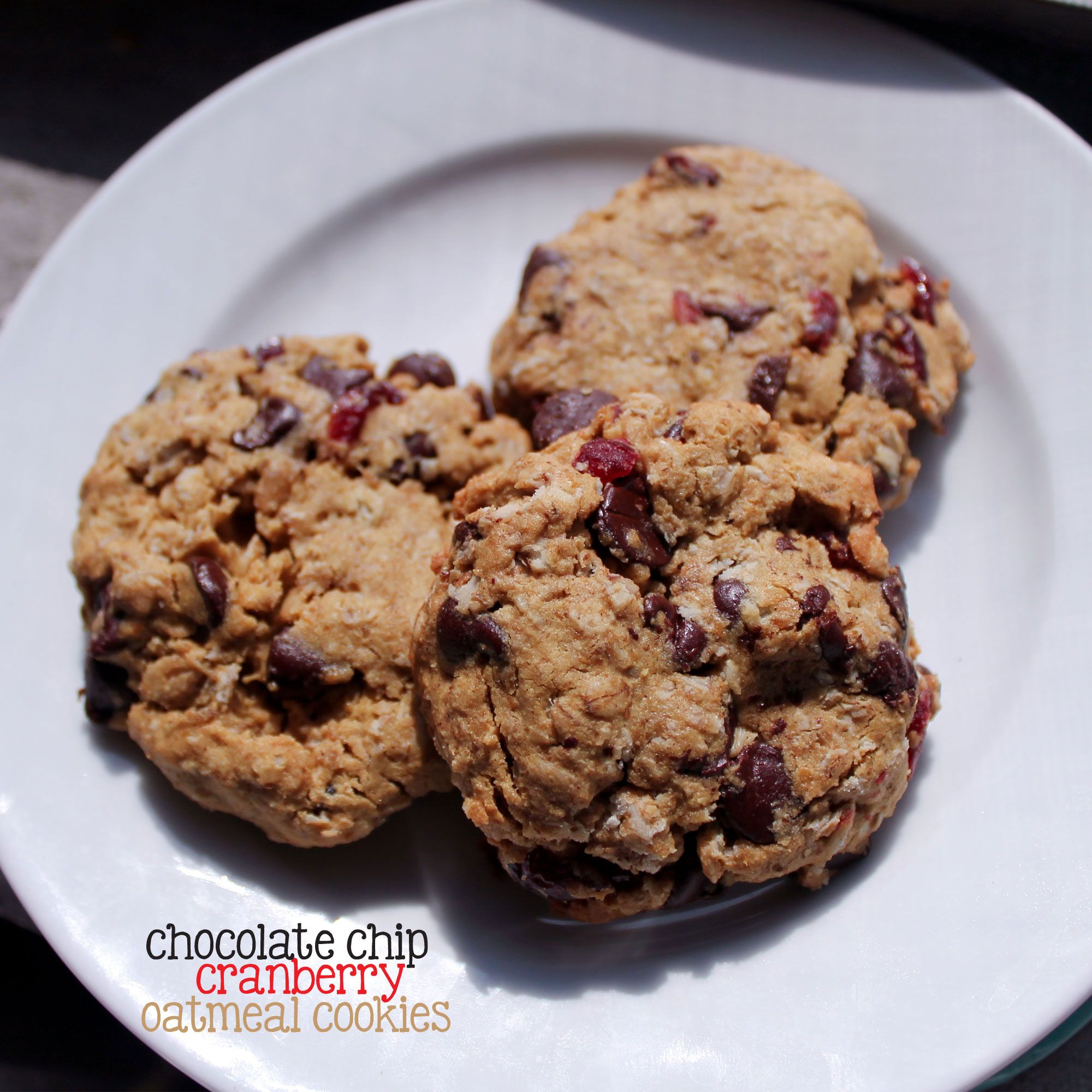 Chocolate chip and cranberry oatmeal cookies certified