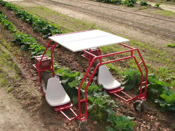 Solar Garden Helper Machine Randyu0027s P Machine. Planting/Picking/Pulling  Weeds/