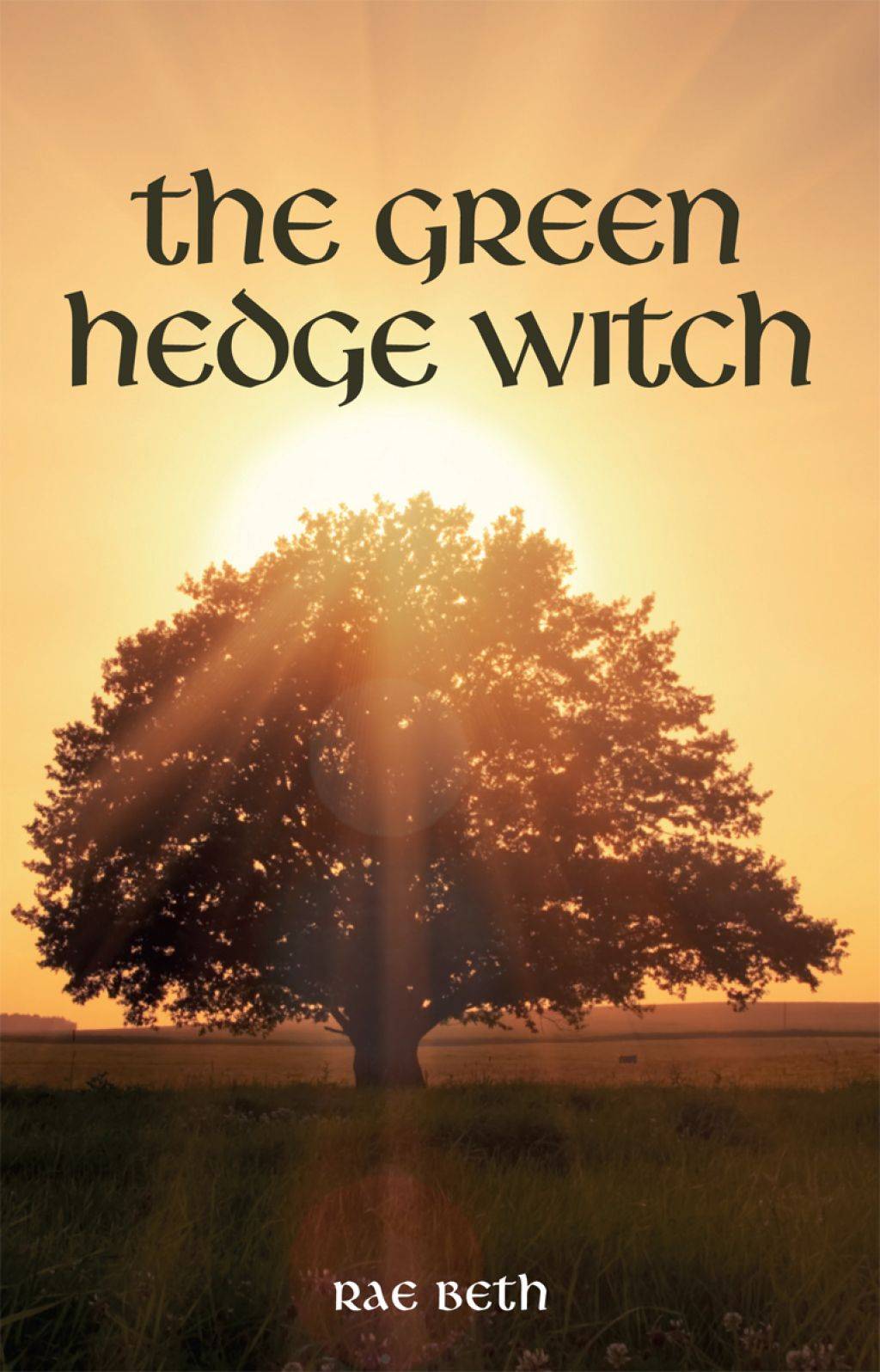 The Green Hedge Witch (eBook) in 2019 | Products | Hedge