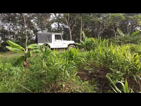 1 acre land 10 lakh best time to purchase land in wayanad rh ar pinterest com