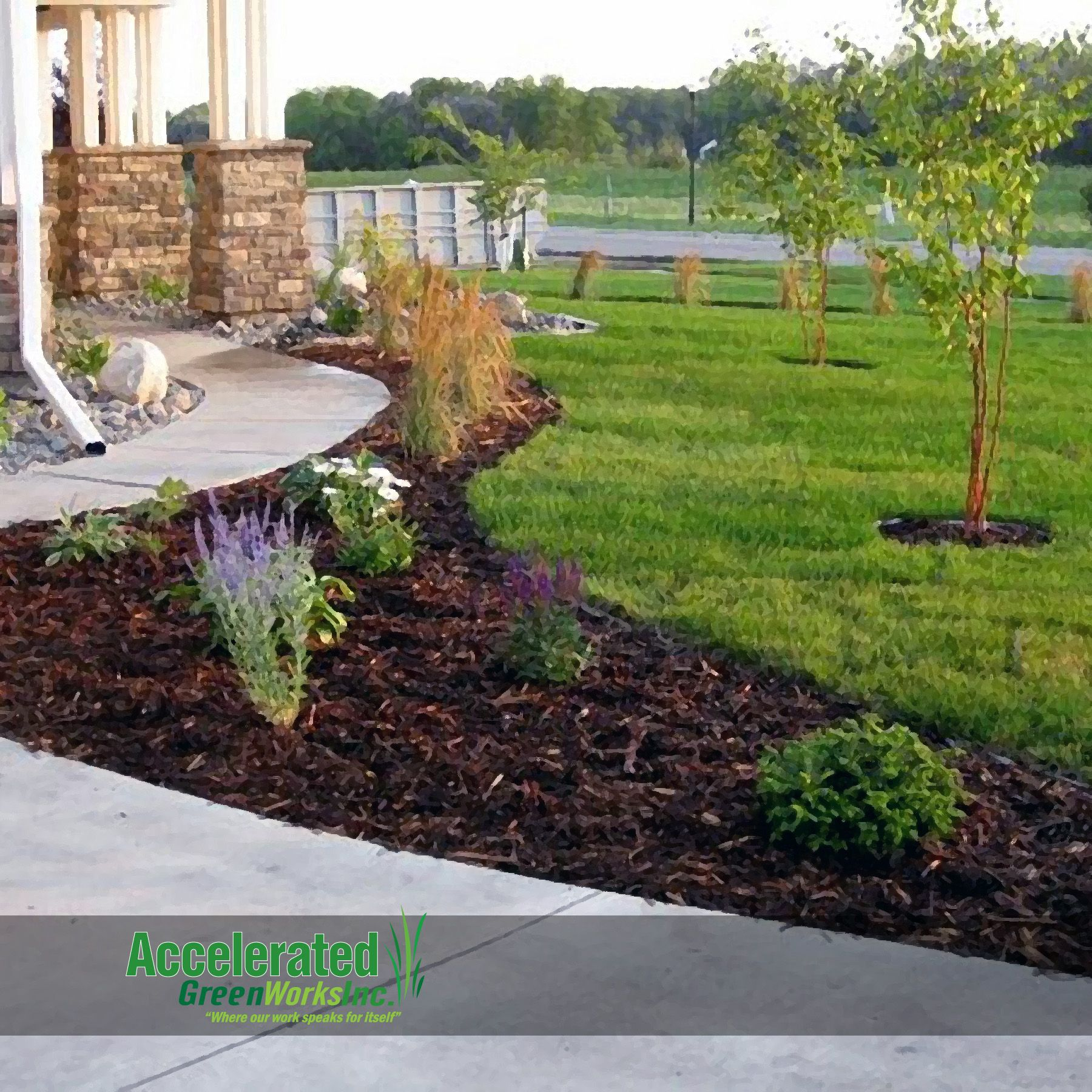 Try Cedar Mulch To Accentuate Your Plant Materials It Works Much Better Than Rock To Provide Necessar Mulch Landscaping Landscape Design Backyard Landscaping