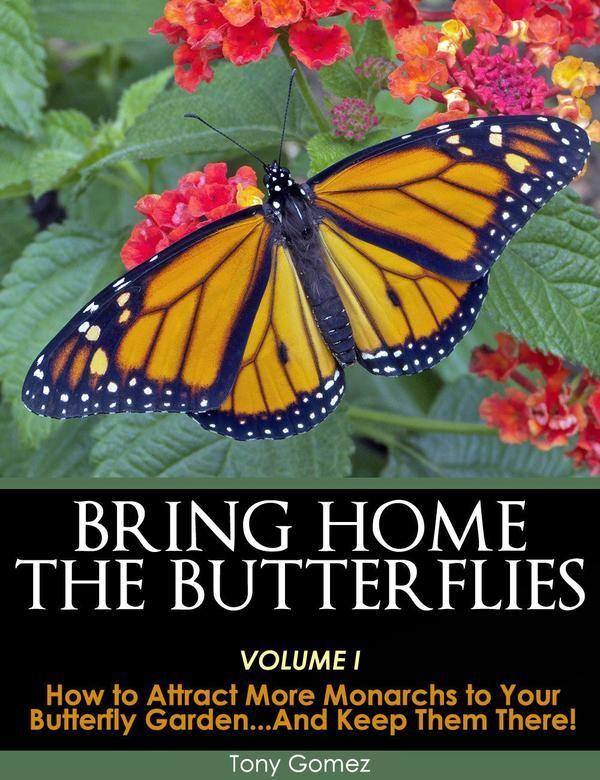 Butterfly Garden Book for Monarch Butterflies- Instant ...