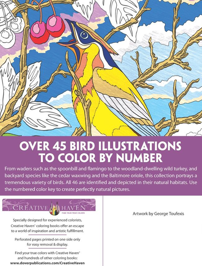 Welcome To Dover Publications Birds Color By Number