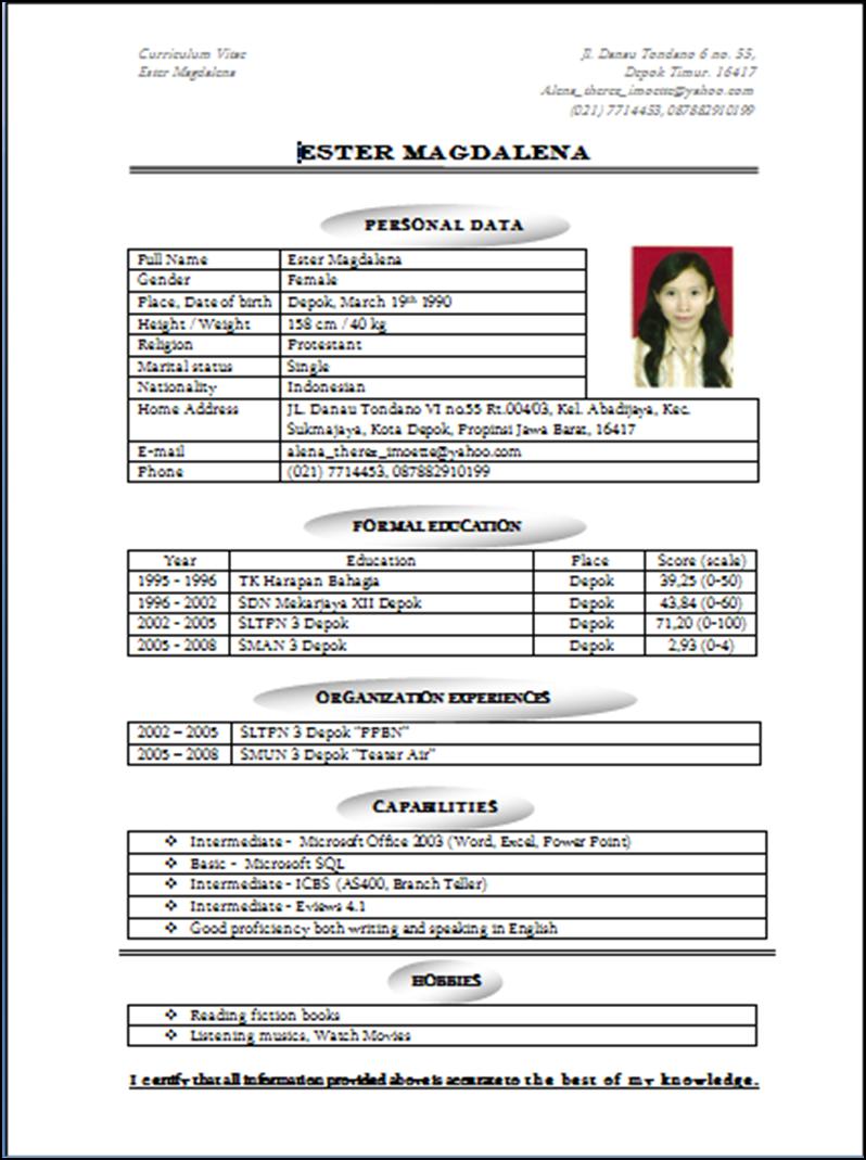 Writing A Perfect Curriculum Vitae Sample Cv Hznrkdk Cv