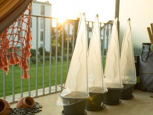 72 DIY Greenhouse Plans to Build Easily in Your Own Garden