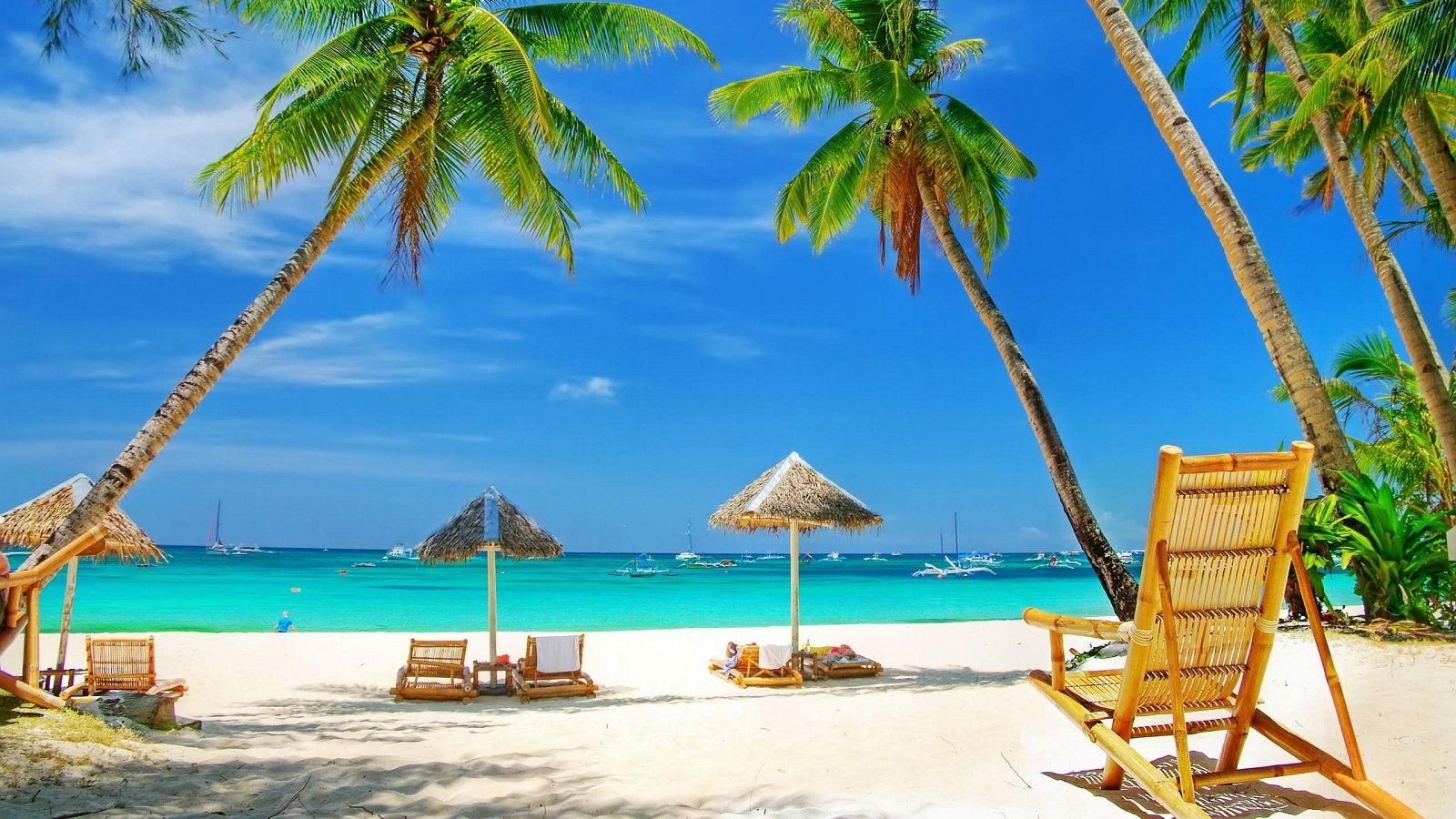 palmiers soleil plages paradisiaques sable fin et blanc vacances sont tous des synonymes des. Black Bedroom Furniture Sets. Home Design Ideas