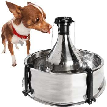 Drinkwell 360 Stainless Steel Pet Fountain Multi Pet Dog Water Fountain Pet Water Fountain
