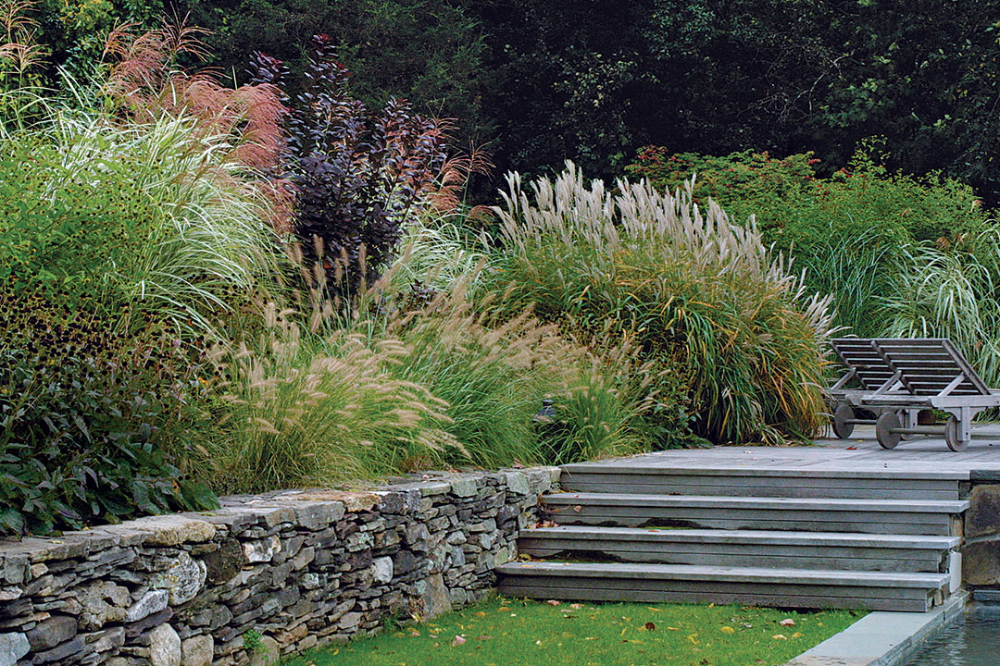 Designing With Grasses Finegardening In 2020 Ornamental Grasses Grasses Landscaping Garden Design