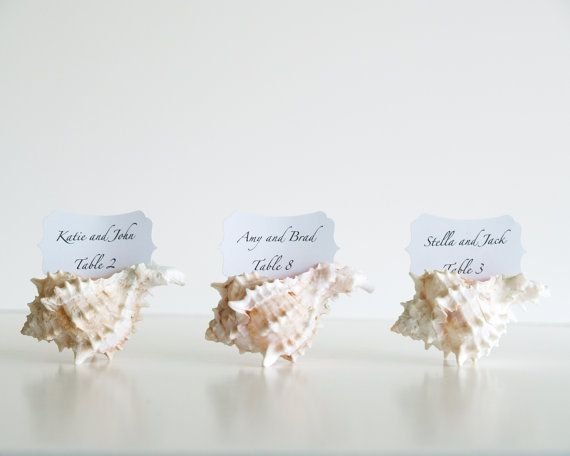 Beach Wedding Place Cards Table Decorations 10 Shell Seating Holders Sea White Pink