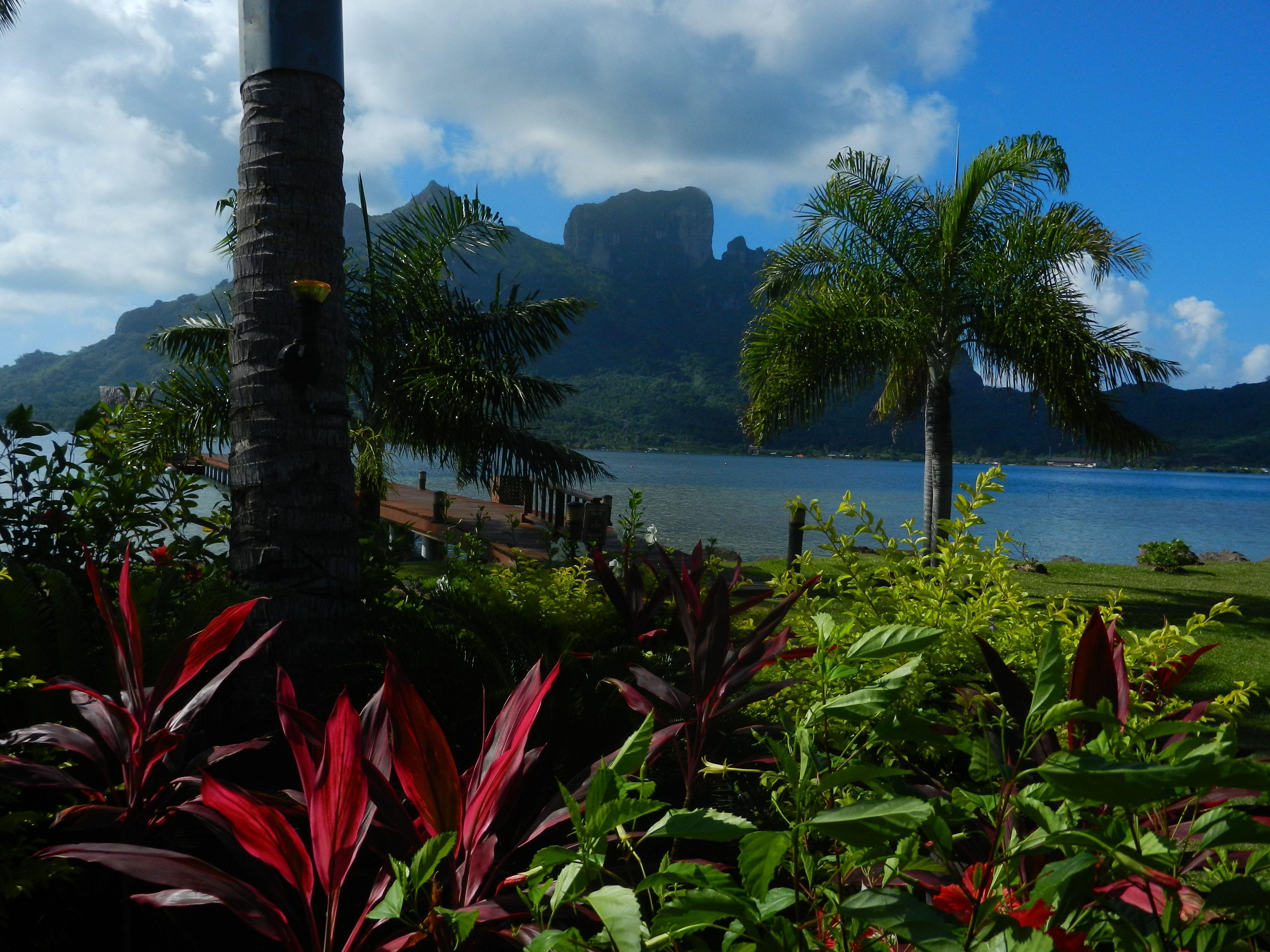 photos don't even show the vibrant beauty of Bora Bora