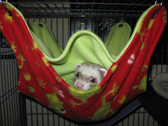 mto huge rat ferret chinchilla hammock bed with 5 openings and 3 layers mto huge rat ferret chinchilla hammock bed with 5 openings and 3      rh   pinterest