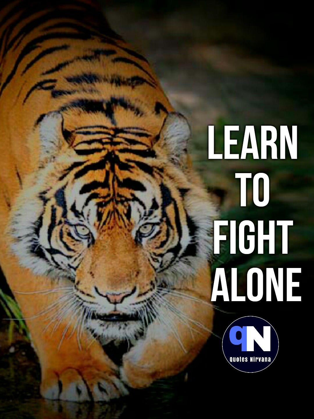 Learn To Fight Alone Quote Quotesnirvana Motivational Quotes