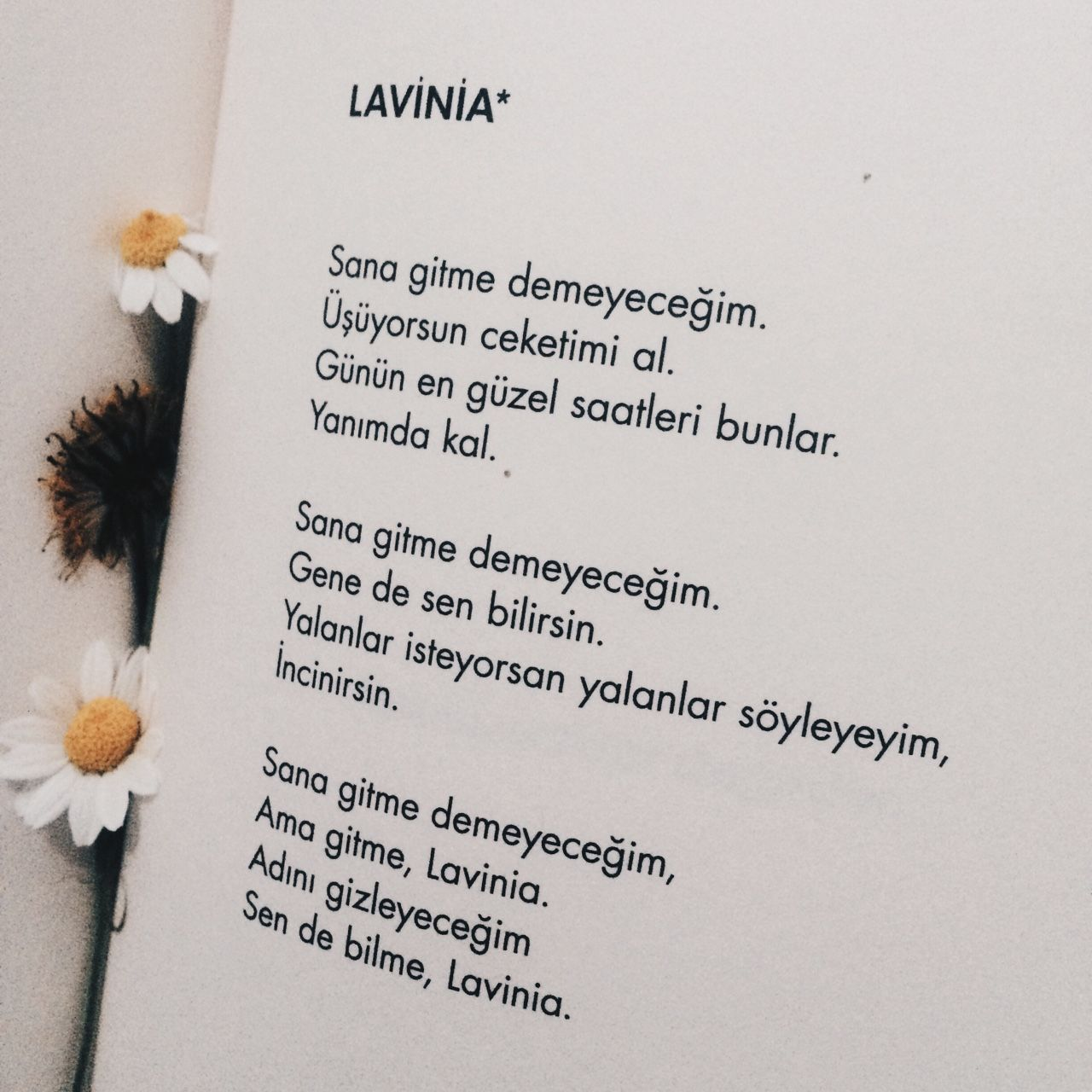 lavinia muslim The name lavinia is an american baby name in american the meaning of the name lavinia is: in classical mythology, lavinia was the daughter of king latinus and the wife of trojan hero aeneas, who named the city lavinium in her honour.