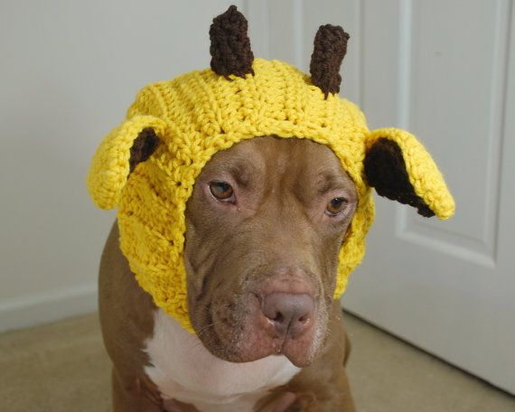Giraffe Dog Snood Crochet Made to Order by courtanai on Etsy, $35.00 ...