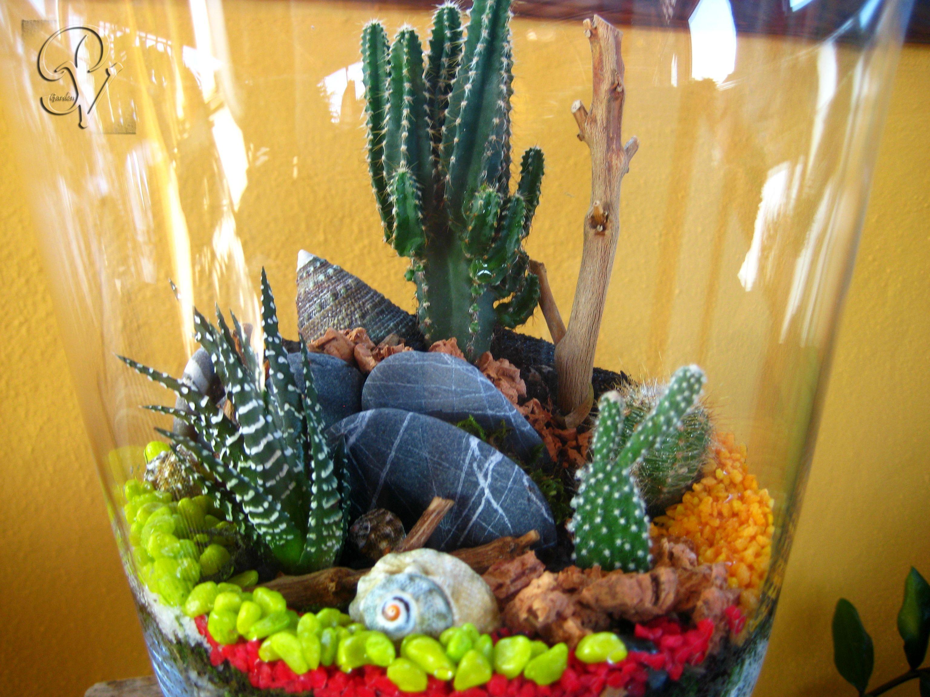 Giardino in miniatura terrario by punti di verde - Giardino in miniatura ...