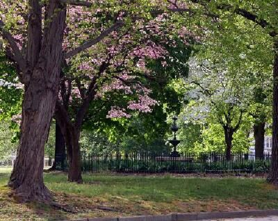 Poplar Lawn Park In Petersburg Va Neighborhood Developed By Robert Buckner Bolling Petersburg The Neighbourhood Photo