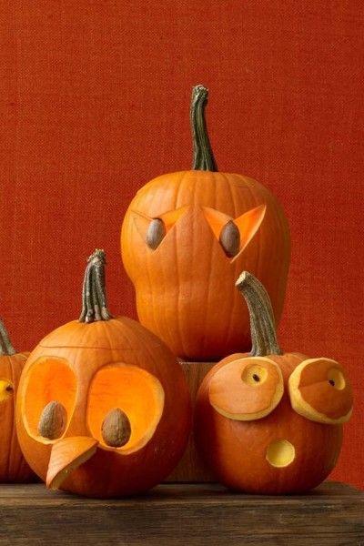bird pumpkins halloween ideas inspiration funny pumpkins rh pinterest com