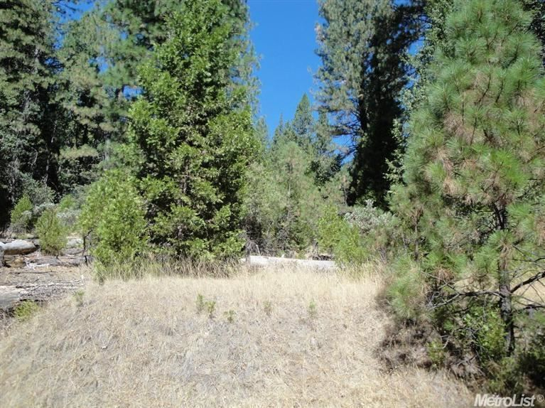7289 Grizzly Creek Dr, Grizzly Flats, CA 95636 — Beautiful area for a get-away cabin. Experience all four seasons at 4000' elevation.