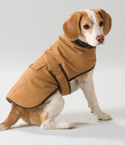 Llbean S Field Coat For Dogs Dog Coats