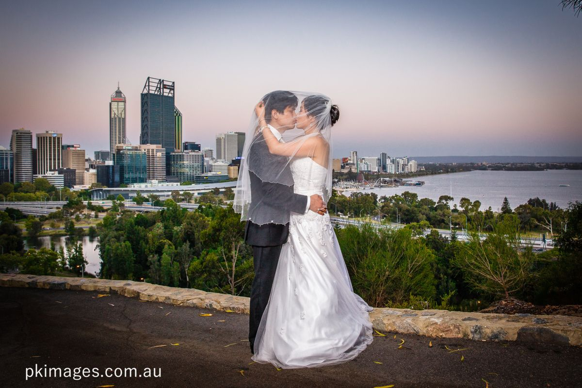 wedding packages western australia%0A A wedding couple is kissing under a veil while standing in the Kings Park  with the