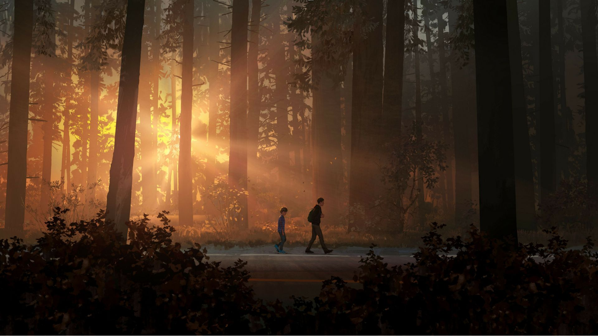 Pin By Sofie Kjaer On Wallpaper Life Is Strange Wallpaper Life Is Strange Background Images Wallpapers