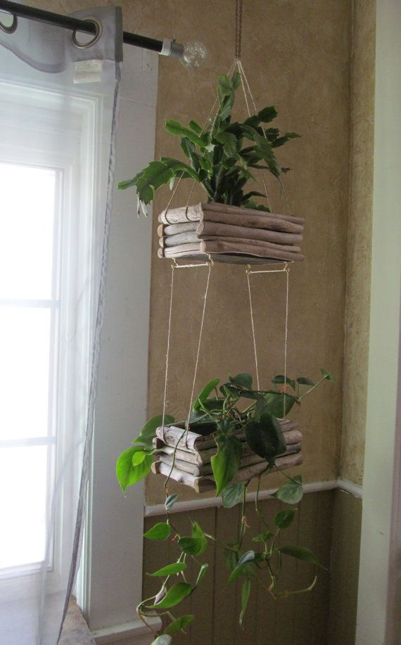 Driftwood Hanging Planter Double Edition Hanging