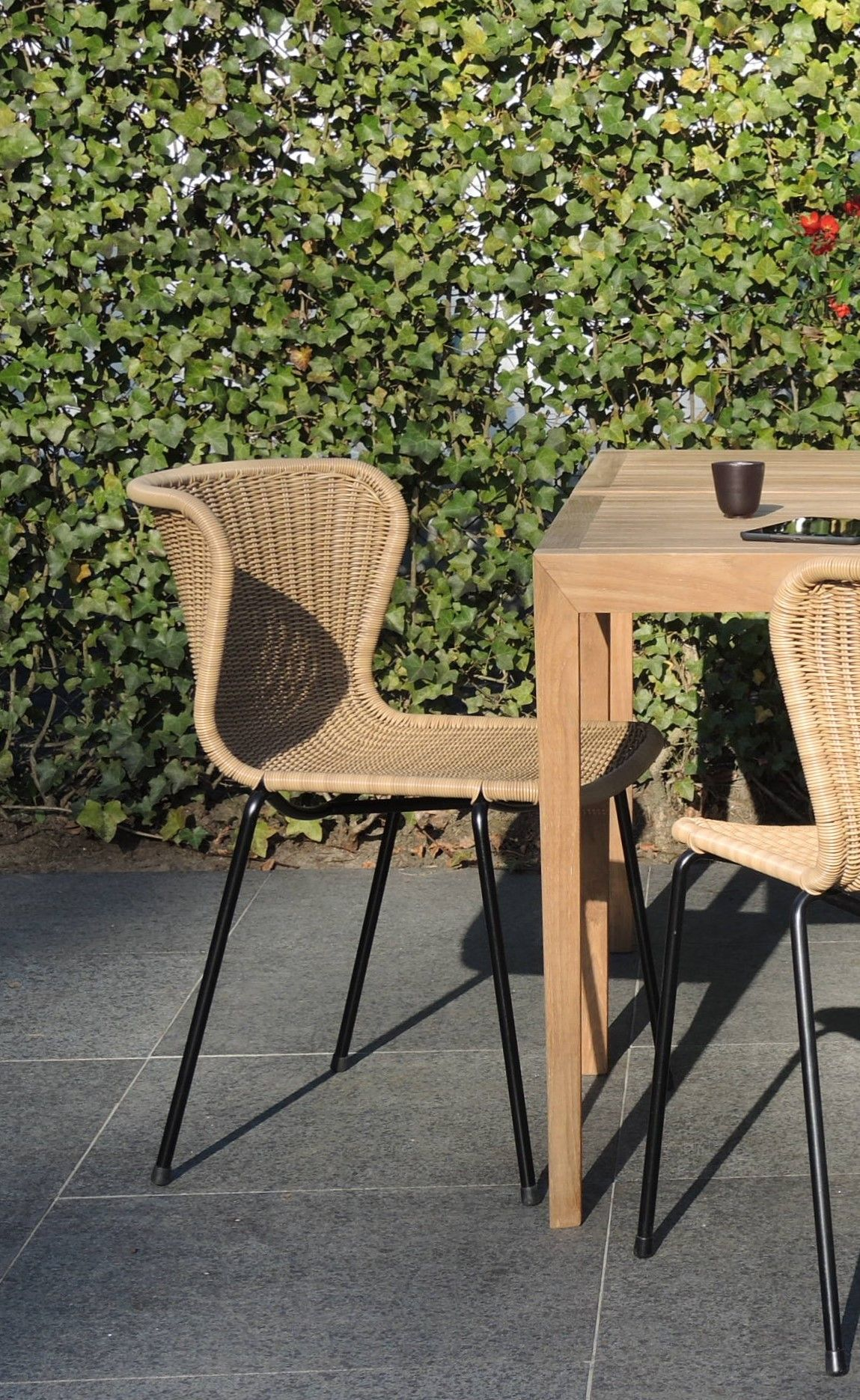 c603 dining chair black frame honey pe shell outdoor sofa rh pinterest com