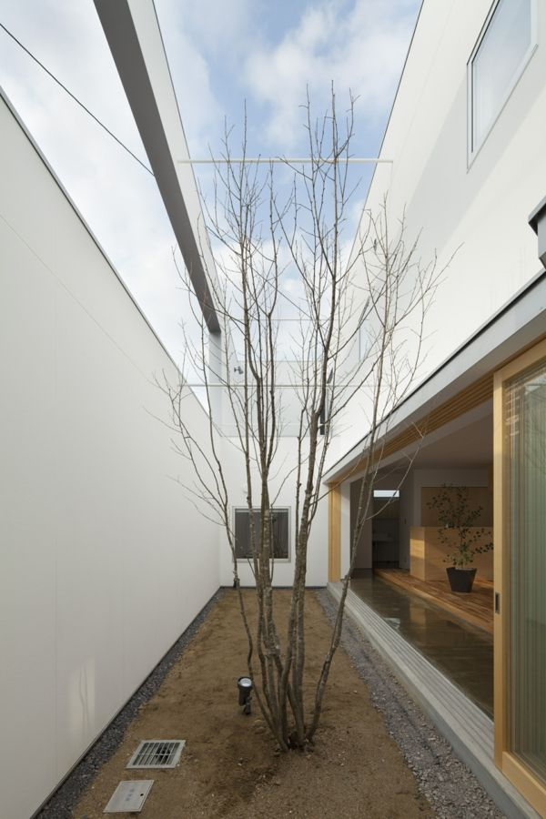 garten gartengestaltung schlicht minimalistisch | architektur, Garten und Bauen
