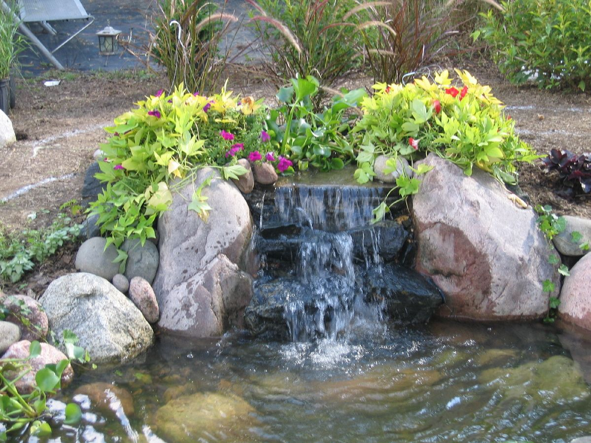 Pin by elizabeth baker on landscape ideas pinterest Backyard pond ideas with waterfall