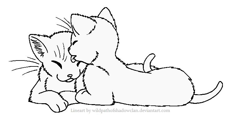 Warrior Cat Couple Aww So In Love Warrior Coloring Pages Cats