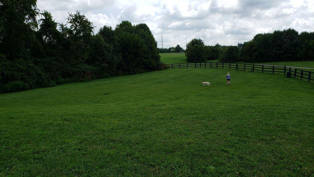 Awesome dog park in lexington kentucky rv living full