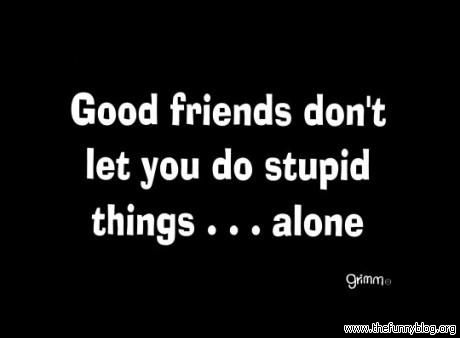 Oh Yeah Stupid Quotes Funny Advice Funny Advice Quotes