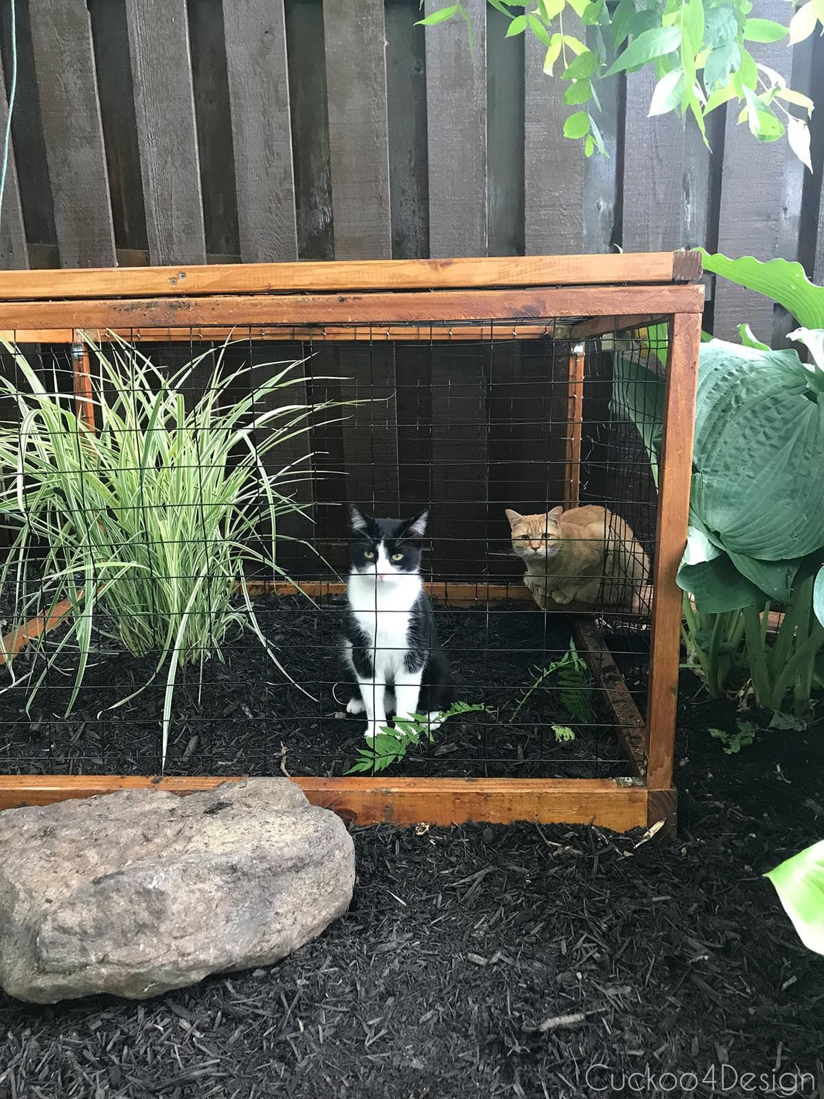 Outdoor Enclosure At The End Of The Tunnel