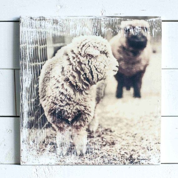 Sheep By The Fence Printed on a Wood Block - Nursery Decor - Baby Gift - Barnyard Picture - Gel Transfer - Farm Photograph