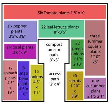Tomato Gardening Veg Garden Garden Design Vegetable Garden