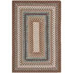 Braided Brown/Multi 2 ft. 6 in. x 4 ft. Area Rug
