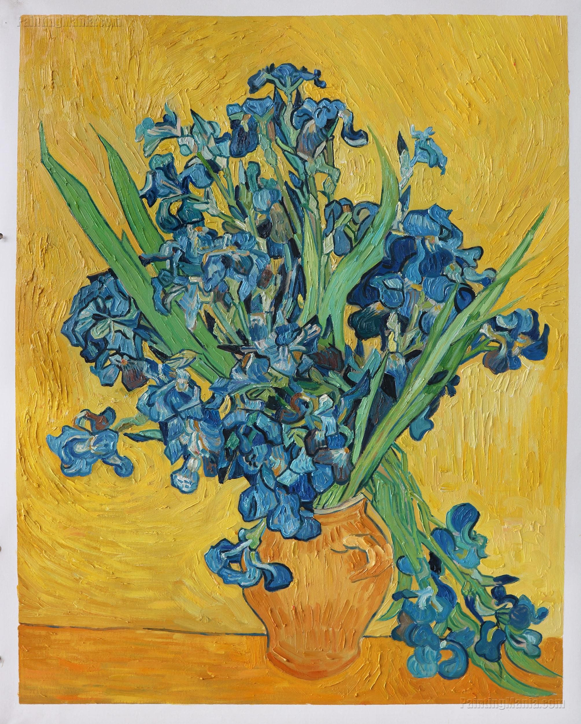 Irises amsterdam vincent van gogh handpainted oil etsy