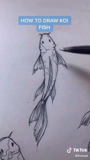 Art drawing tutorial for drawing koi fish. Koi fish drawing tutorial. Drawing video tutorial.
