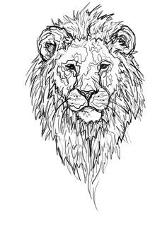 lion tattoos on pinterest 59 pins drawings pinterest. Black Bedroom Furniture Sets. Home Design Ideas
