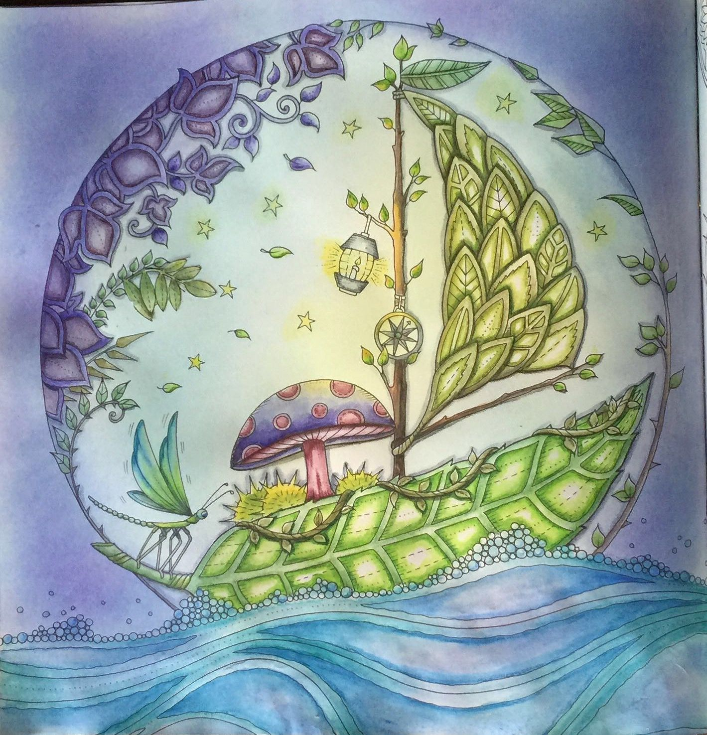 Enchanted Forest coloring page johannabasford,